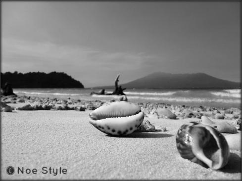 Beach BW