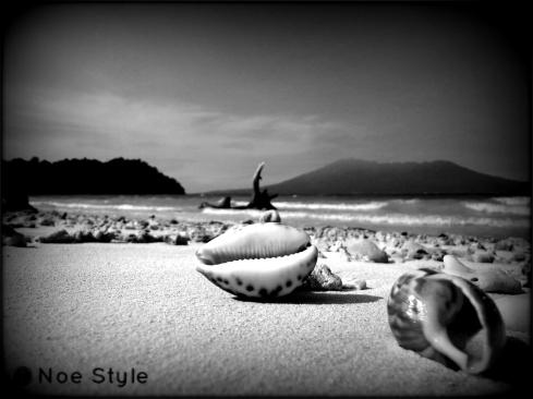 Beach with holga effect
