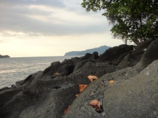 I was at an island, waiting for sunset